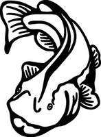 Catfish Decals FSN1-243 Vinyl Fishing Window Stickers