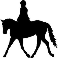 Equestrian Show Horse Decal ST2010S #14 Vinyl Trailer,Truck Window Stickers
