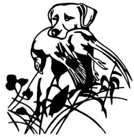 Pheasant Bird and Dog Decal WD#069 Bird Hunting Window Sticker