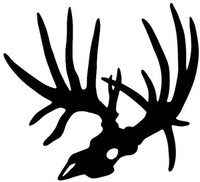 Big Buck Deer Skull Decal ST2010D #53 Hunting  Stickers