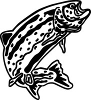 Trout Decal FSN1-233  Boat,Truck,Window Stickers