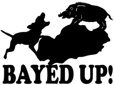 Wild Hog Hunting Decals/Stickers