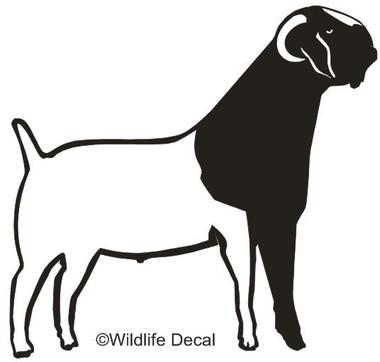 Vinyl Farm Animals, Custom Cut Boer Goats Decals and Window Stickers.