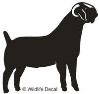 Vinyl Farm Animals, Boer Goats Decals and Window Stickers.