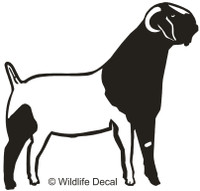 Vinyl Farm Animals, Boer Goats Decals, Window Stickers & More.