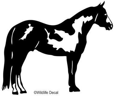 Awesome Paint Horse Decal, SHOWN IN BLACK