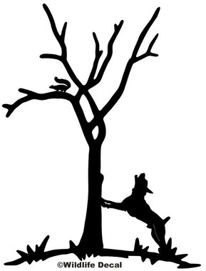 Awesome Squirrel Hunting Decals