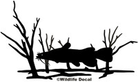 Catfish Fishing Decals and Stickers