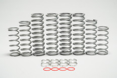 Honda Talon 1000X Spring kit