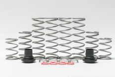 XP 900 (DRS) Dual Rate Spring Kit