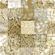 Swarovski 2493 MM 10,0 CRYSTAL GOLD-PAT F(144pcs)