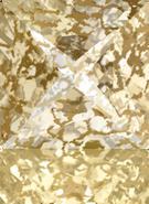 Swarovski Fancy Stone 4418 MM 6,0 CRYSTAL GOLD-PAT F(216pcs)