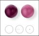 5818 Crystal Elderberry PRL (001 2019)