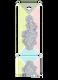 6925 Crystal AB (001 AB)