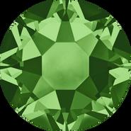 2078 Fern Green (291)
