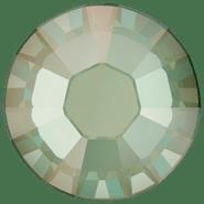 2038 Crystal Silky Sage DeLite HFT (001 L147D)