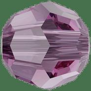 5000 Iris (219)