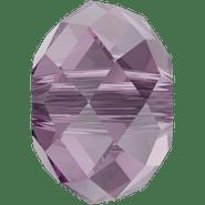 5040 Iris (219)
