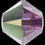 5328 Iris AB (219AB)