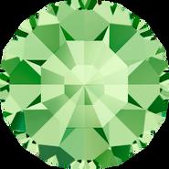 Swarovski Round Stone 1100 - pp0, Peridot (214) Foiled, 1440pcs