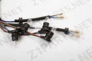 Indicator Panel Harness Z1 900