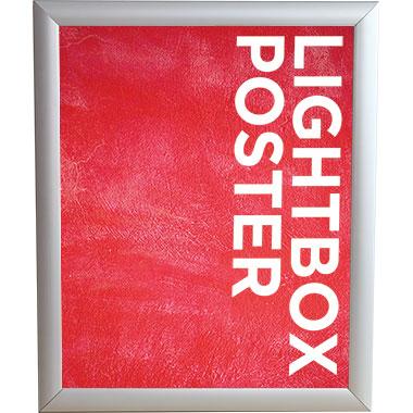 Trappa™ Light Box 04