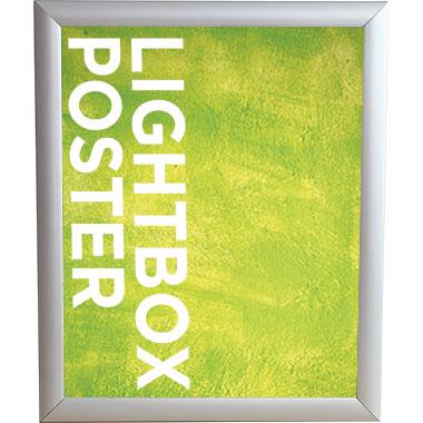 Trappa™ Light Box 05