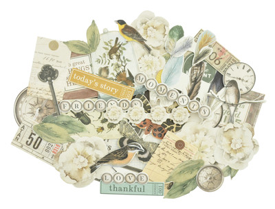 Kaisercraft  Collectables, Die Cut Shapes, over 40 pcs, Anthology,  CT938,  Scrapify, Australia