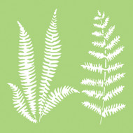 Kaisercraft, Designer Template, 6 x 6in, Ferns, IT483, Scrapify, Australia