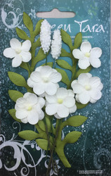 Green Tara, Primrose Collection, Flowers, White, 8pk, Scrapify, Australia