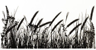IndigoBlu Cling Stamps - Tall Grasses Stamp, Scrapify, Australia