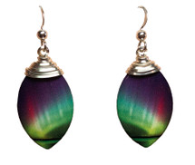 Oval Rainbow Earrings