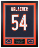 Brian Urlacher Autographed & Framed Blue Bears Jersey Auto PSA COA D2-S
