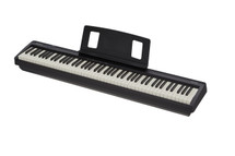 Roland FP10 Digital Portable Piano
