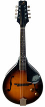 JR Reynolds Mandolin Acoustic/Electric f Hole Style