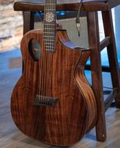 Michael Kelly MK Forte Koa Acoustic Electric Guitar