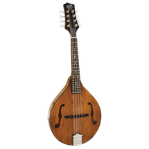Barnes and Mullin BM600E Wimbourne Mandolin with Pick up