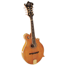 Barnes and Mullin BM700 Piercy Mandolin