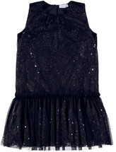 Verny Navy Tulle Spencer Dress