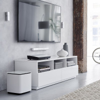 Bose® Lifestyle® 650 home entertainment system