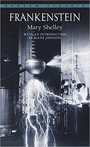 Frankenstein by Mary Shelley Teacher Guide, Lesson Plans, Novel Unit