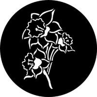 Daffodil (Rosco)