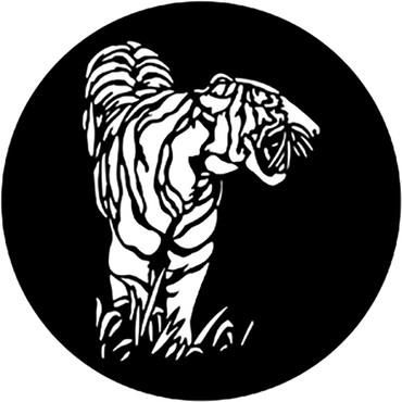 Tiger (Rosco) - ShopWL