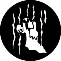 Ghost 5 (Rosco)