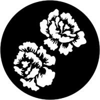 Roses (Rosco)