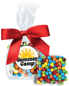 Summer Camp Chocolate Grahams w/Mini M&Ms