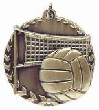 Volleyball Millennium Medal