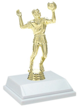 Volleyball Male 6 Inch Trophy