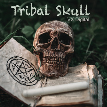 Tribal Skull /  High Quality 1280 × 720 Mp4 Video Clip by VX Digital Productions 2019