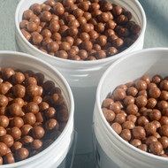 Macadamia Nuts in Shell - 10 lb.